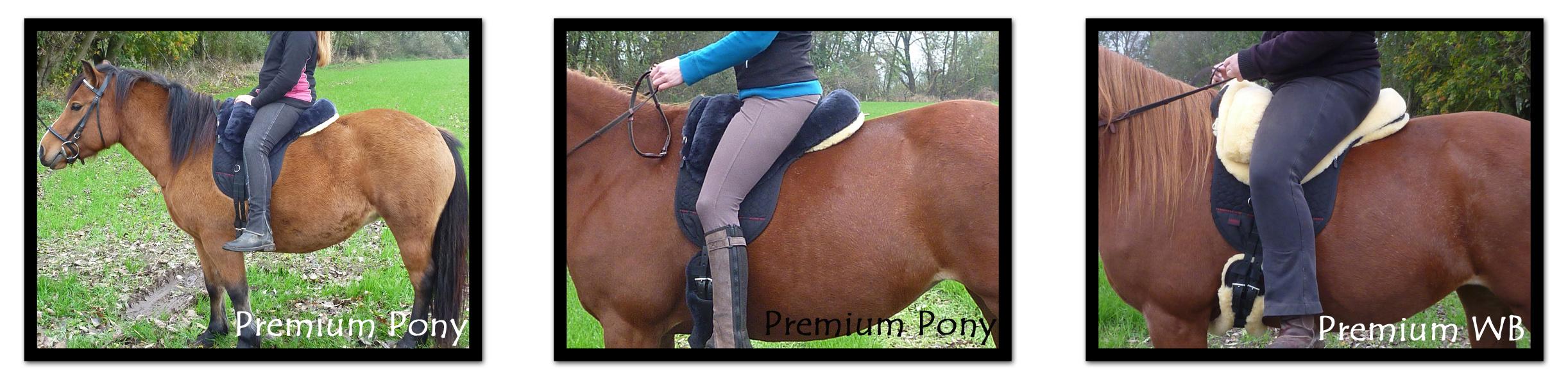 Größenvergleich Fellsattel Premium Plus Pony und Warmblut und Grandeur